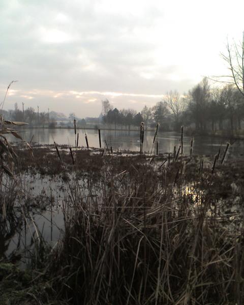 Pont-Scorff hiver 2009