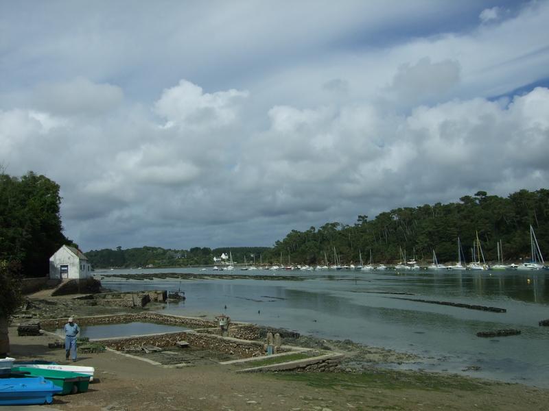 Port du Bélon et ses parcs à huitres