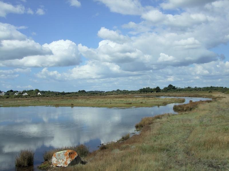 Locmariaquer (reflets dans l'eau, Marais de Brennegi)