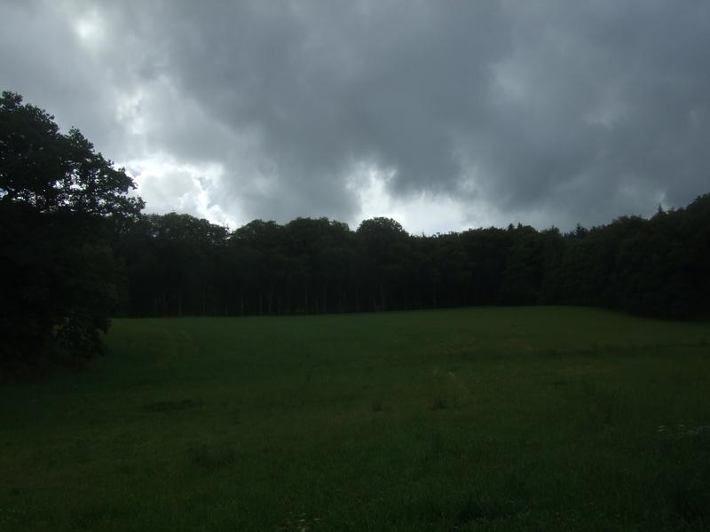 Parc du château de PontCallec (image sombre)
