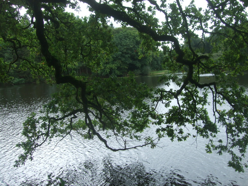 Reflet étang de Pont Callec