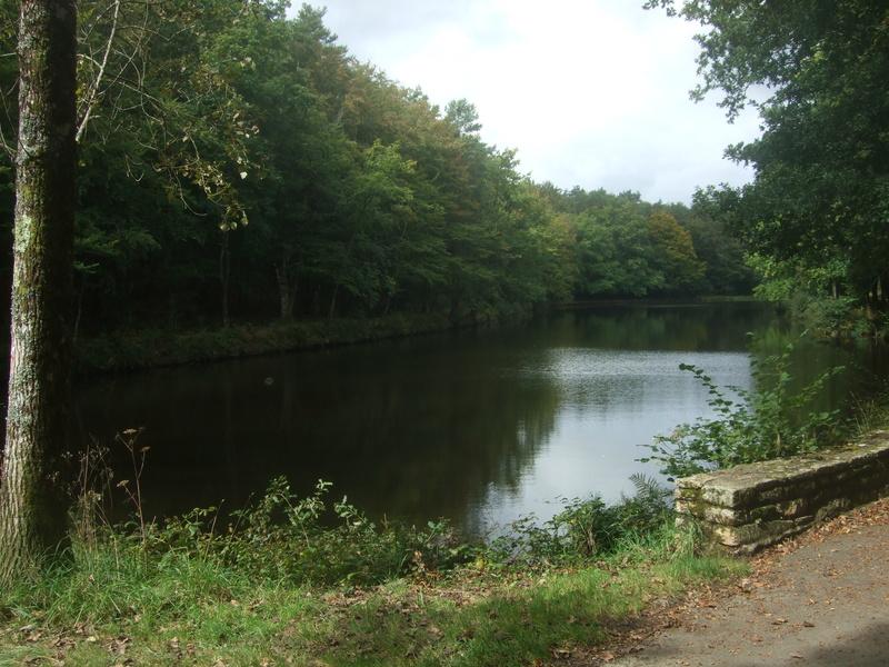 Camors: étang du Petit Bois