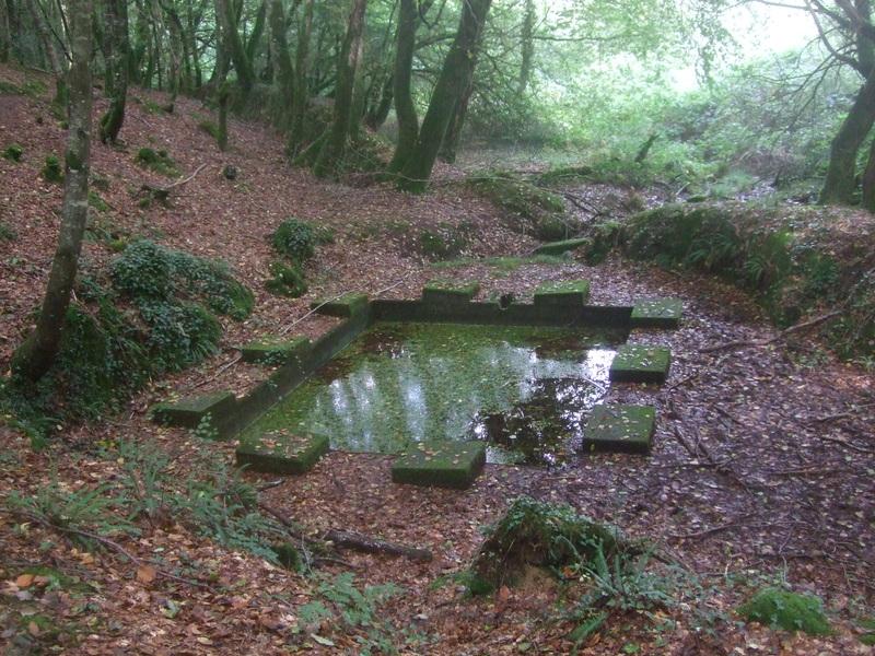 Ancien lavoir (?) forêt de Camors (circuit Tro Bourk)
