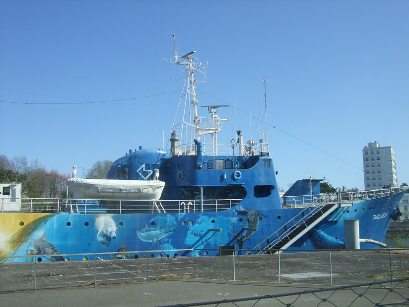 Non ce n'est pas Tara, mais un autre bateau, la Thalassa, «navire découverte», décoré façon street art
