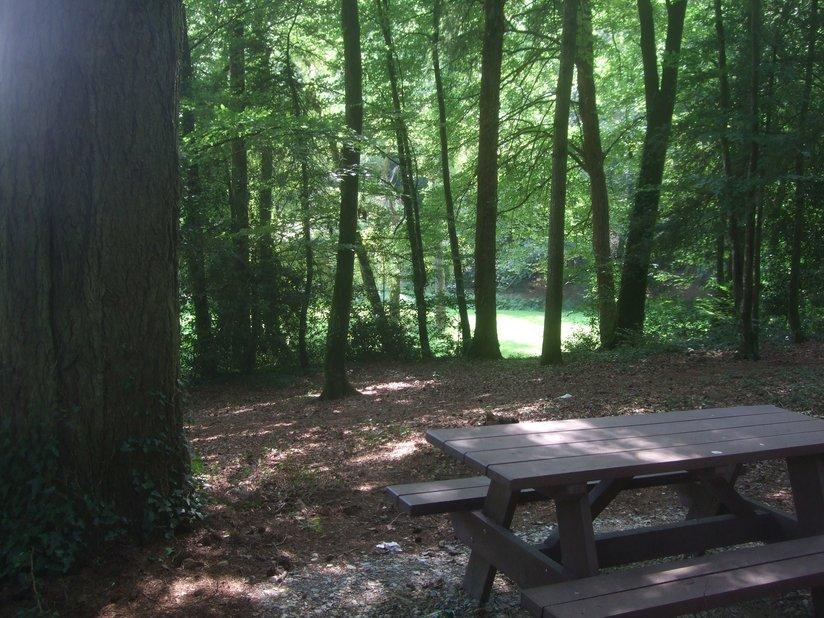 Table de pique-nique parc de Kergoff