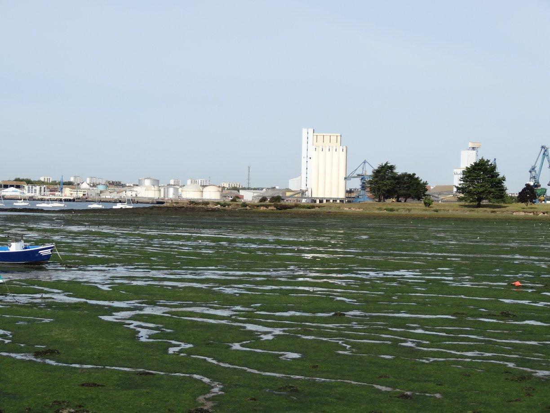 Rade de Lorient envasée vue de Locmiquélic