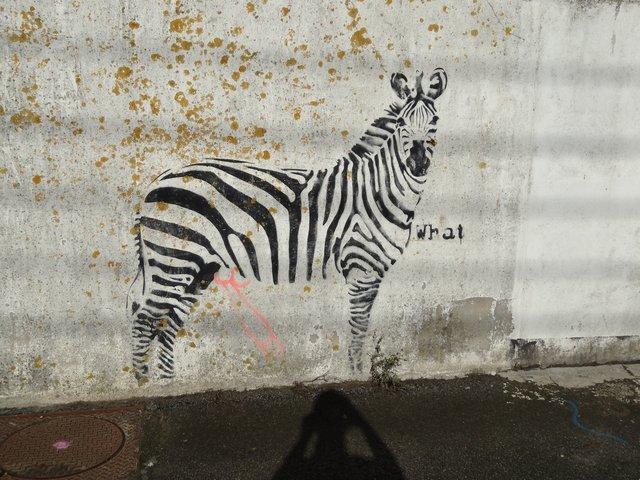 Street Art port de Lorient (graffitis) : drôle de zèbre !